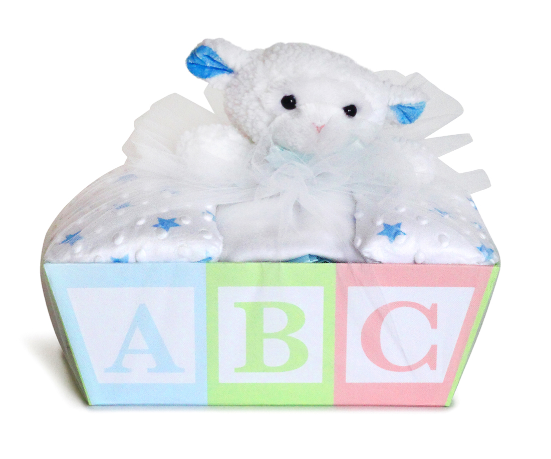 Baby blanket lovey gift basket from silly phillie baby blanket lovey gift basket negle Image collections
