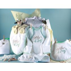 Baby Shower Clothesline newborn baby gift